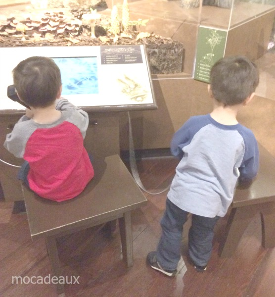 Chip and dale at museum