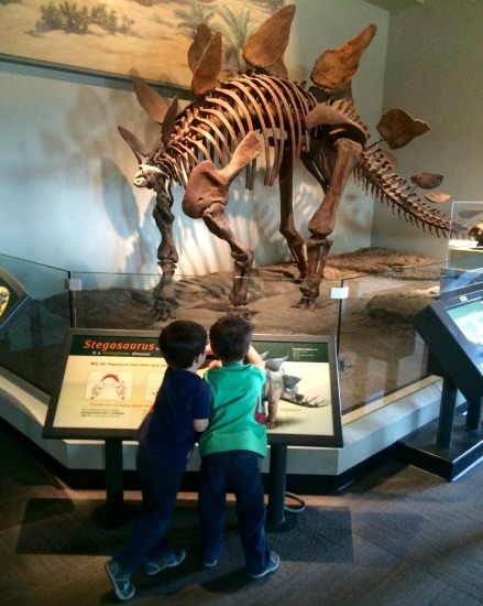 Mocadeaux - Chip and Dale at the Field Museum
