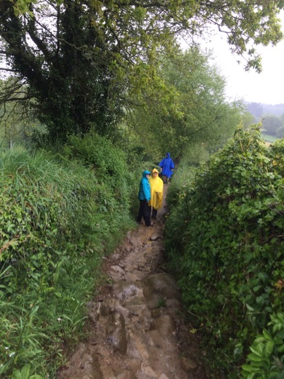 Camino muddy trail